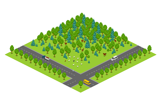 Area - Forest