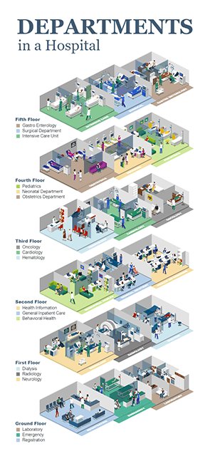Departments in Hospital